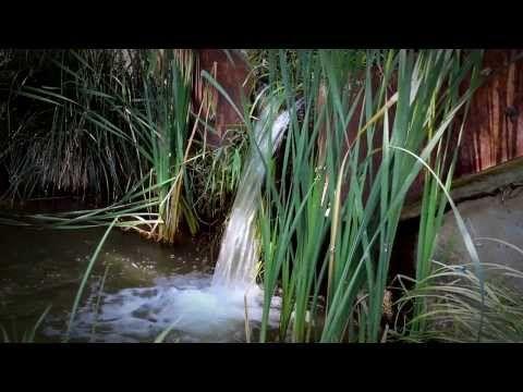 Őrségi nemzeti park - Vadása tó és környéke - YouTube