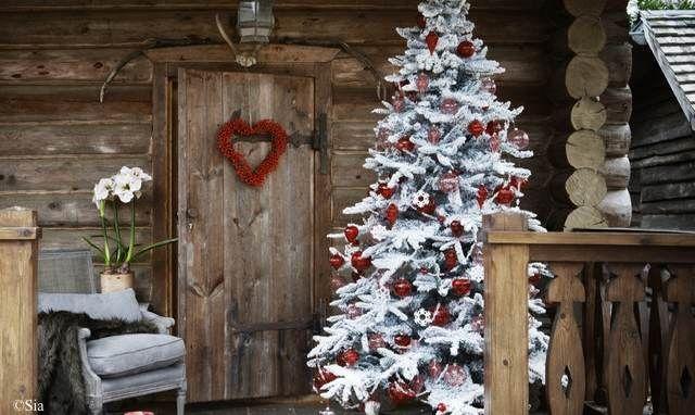 Sapin de Noël blanc                                                                                                                                                                                 Plus