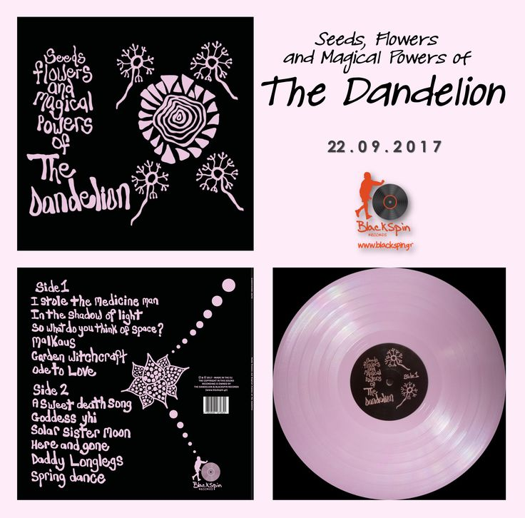 """This September (22/09/2017), Blackspin Records re-releasing the """"Seeds, Flowers and Magical Powers of The Dandelion"""" in Europe & for the rest of the world in 300 pink coloured vinyl copies!"""