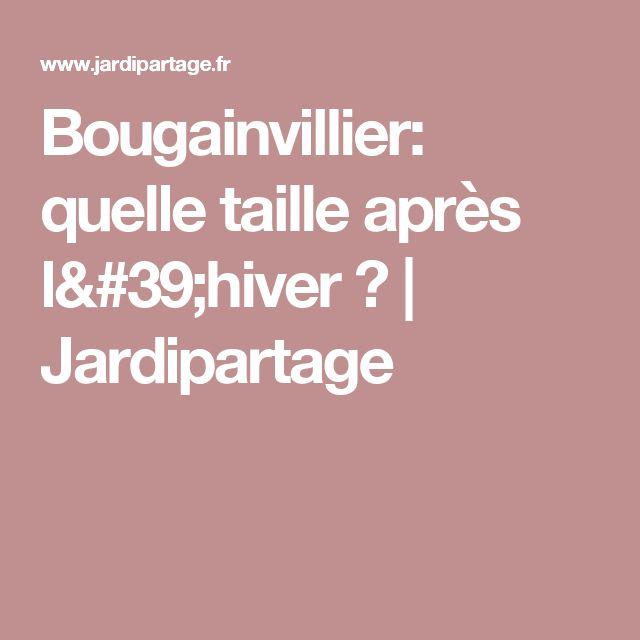 1000 id es propos de bougainvillier sur pinterest - Comment tailler un bougainvillier ...