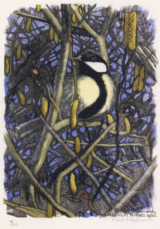Grande charbonnière 11.3.1952, Moulin-de-Vert (Genève) Robert HAINARD Oiseaux 19,7 x 14,2 cm tilt bird
