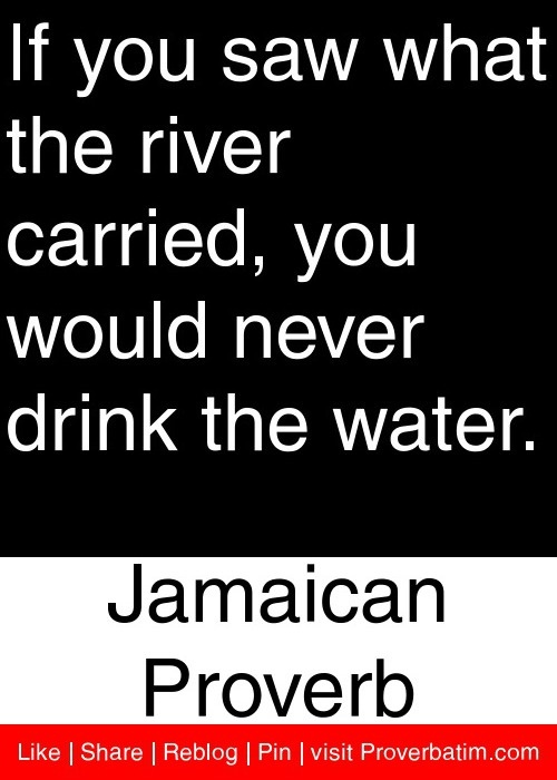 If you saw what the river carried, you would never drink the water. - Jamaican Proverb #proverbs #quotes
