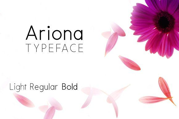 Ariona Font Family by Webcodesigns on @creativemarket