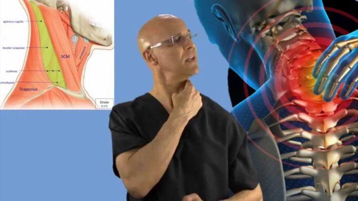 90-Second Relief Technique for a Stiff Neck (Wry Neck, Torticollis)- Dr ...