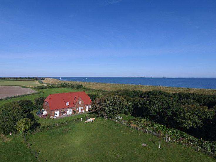 Norderlands - Haus Sonnenkuss - Nordfriesische Inseln: 2 Schlafzimmer, für bis zu 4 Personen. Der schönste Fleck Pellworms! Urlaub für Hund, Kind und Kegel direkt am Deich | FeWo-direkt