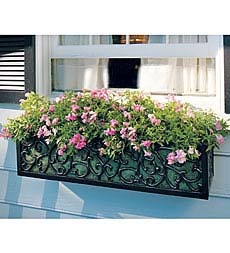 14 Best Images About Wrought Iron Window Box On Pinterest