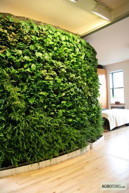 Стены из живых растений в интерьере и экстерьере, сад на крыше