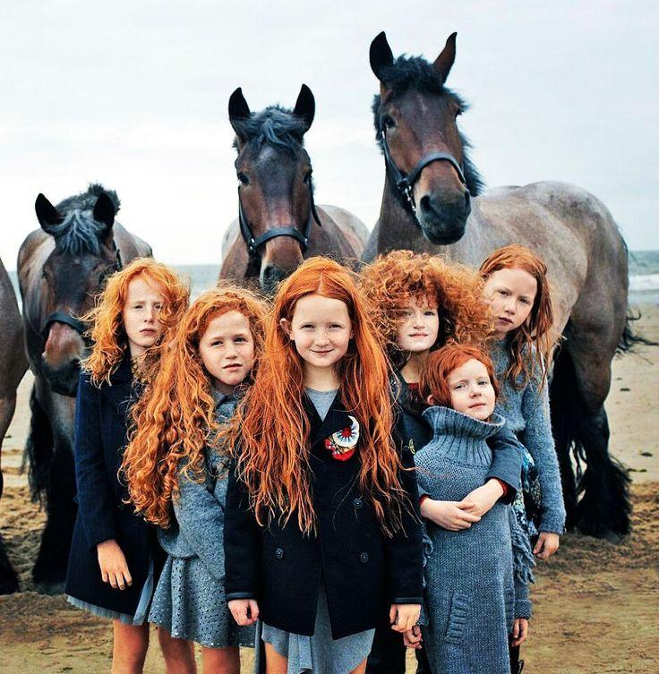 """22.2k Likes, 366 Comments - Лепра (@lepragram) on Instagram: """"Красота по-ирландски #лепра #ирландия #ирландцы #рыжухи #лошадки"""""""