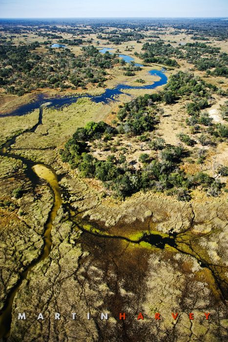 Botswana. Waterways of the Okavango Delta - What an amazing place! If you get a chance to, go!