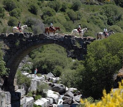Gredos, in the stony heart of Castile, is an excellent location for an unforgettable equestrian holiday.  http://ridingtourism.com/units/jerebeque-trails
