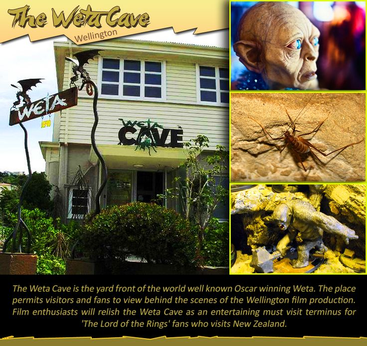 The Weta Cave - Wellington, #NZ :  The Weta #Cave is the #yard front of the #world well known #Oscar winning #Weta. The place permits #visitors and #fans to view behind the #scenes of the #Wellington #film production. Film enthusiasts will relish the Weta Cave as an #entertaining must #visit terminus for 'The #Lord of the #Rings' fans.  |    #thewetacave #filmstudio #lordoftherings #travel #kiwitravel #cheapflights  |     #flightstowellington : http://www.kiwitravel.co.uk/flights/wellington