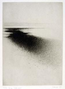 "Gunnar Norrman, dry point, ""Mörk revel"" 1977. A constant use of crosshatch used to create this dark to light effect"
