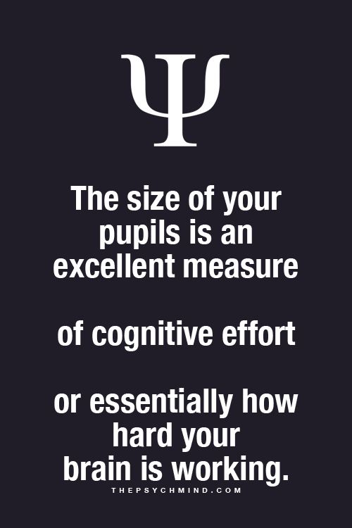 The size of your pupils is an excellent measure of cognitive effort or essentially how hard your brain is working.