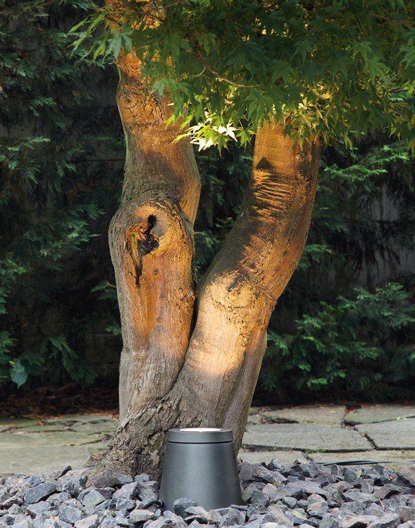 Erleuchtend: Bodenstrahler von Bega - Gartenleuchten: Schönes Licht für Garten, Terrasse und Balkon 4 - [SCHÖNER WOHNEN]