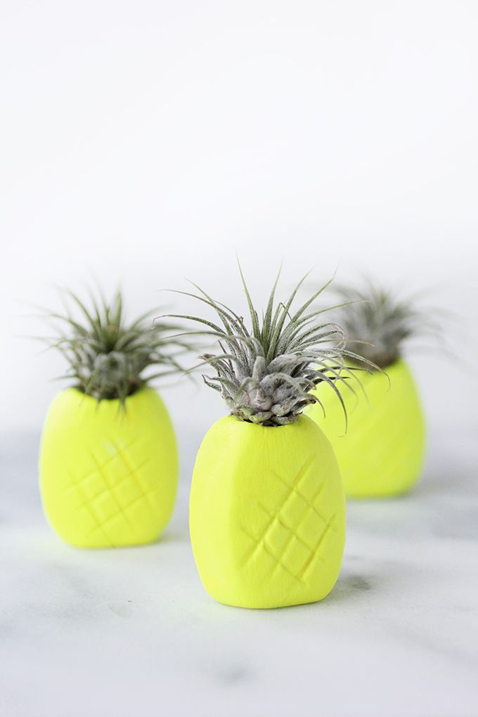 DIY Neon Pineapple Airplant Holder Tutorial