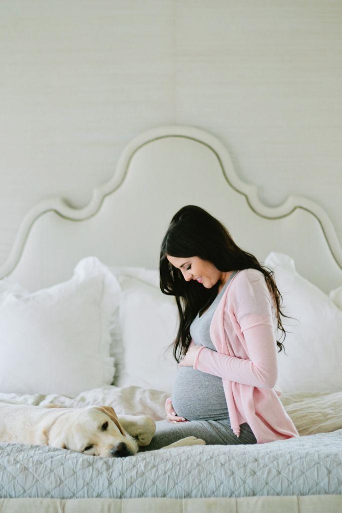 perros y embarazadas (1)