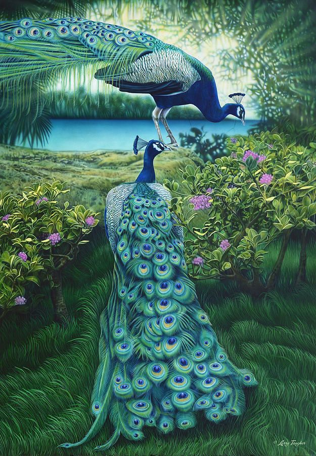 Peacock Garden Painting by Artist: Larry Taugher