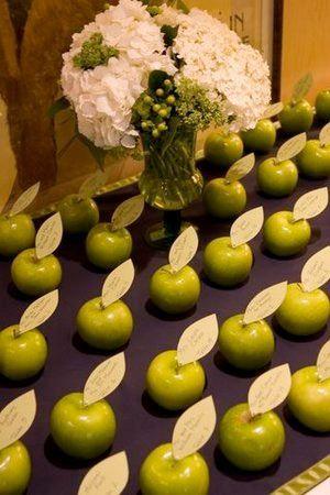 Svatební agentura - Svatební fotogalerie - Zelená svatba - Zelená svatba