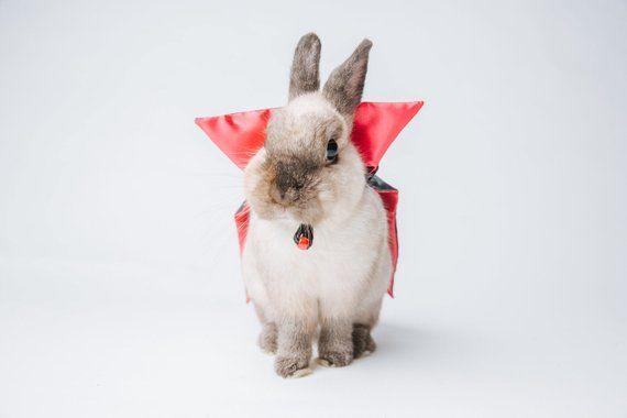 Vampire Cape Pet Costume For Small Animals Bunny Costume