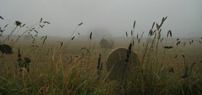 Engels platteland