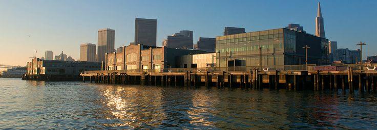 Visit Our New Home at Pier 15 - Now Open! | Exploratorium