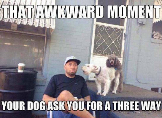 Funny Moment Meme : That awkward moment when meme lol funny gifs