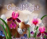 Goodnight, Sweet Dreams, God Bless