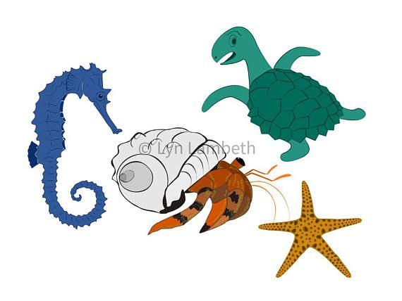 Hermit crab, seahorse, turtle and starfish clipart commercial use., instant download