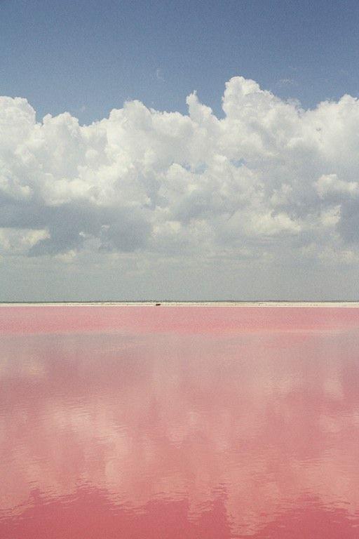 Pink Salt Pools, Mexico
