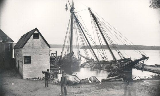 195 best fishing schooner 2 images on pinterest. Black Bedroom Furniture Sets. Home Design Ideas
