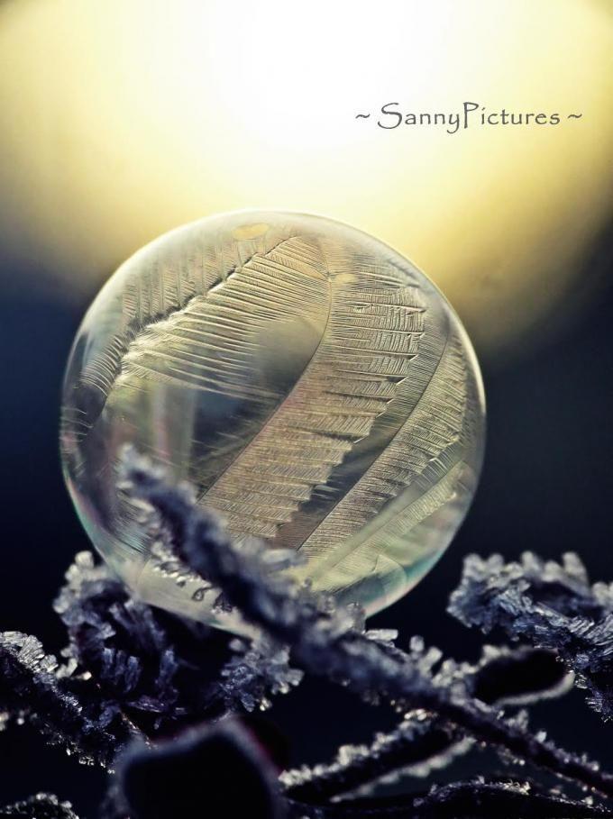 Gefrorene Seifenblase - Sandra Lechner