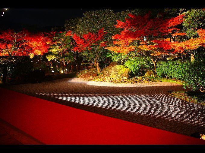 ついに紅葉シーズン!日本一美しい京都の紅葉スポット10選 | RETRIP