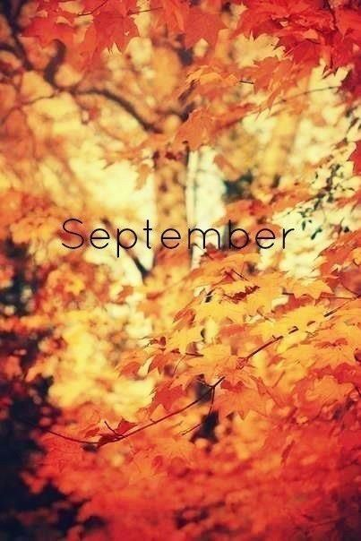 Time to pull out the sweaters & let your heart leap at the crisp air & changing autumn leaves : )