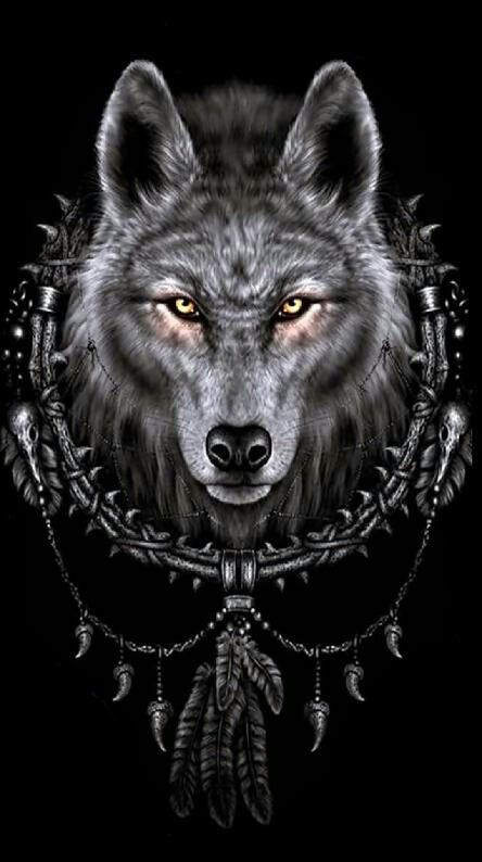 Pin By Michael Mcclure On Animals And Pets Pinterest Wolf Wolf