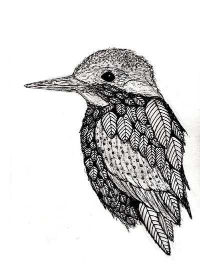birdy... inspiration for possible vintage girl bird-themed room some day...
