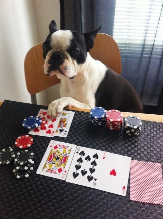 Stud poker.....