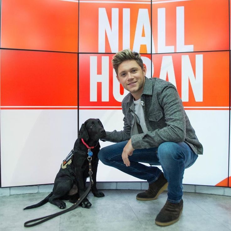 Niall at the TODAY Show