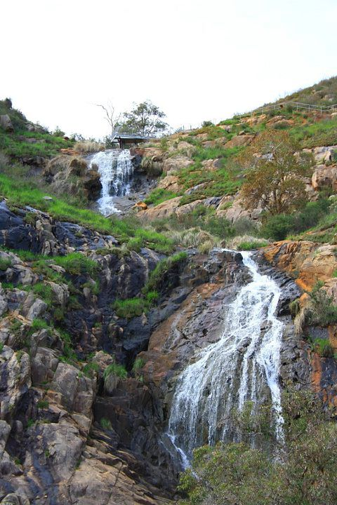 waterfalls, lesmurdie, bushwalk,