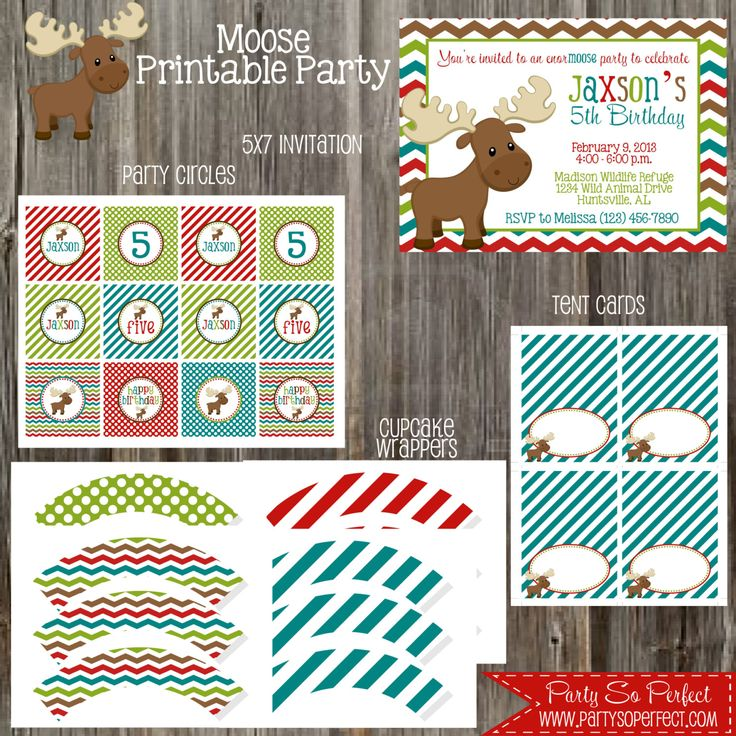 Mighty Moose Birthday Party Package Boy DIY by PartySoPerfect