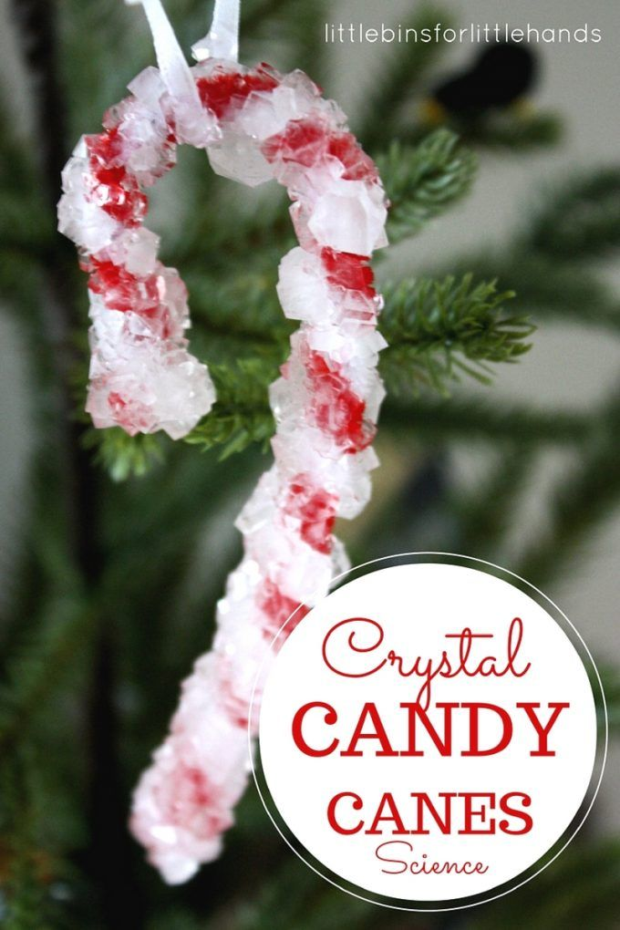 Crystal candy canes science ornament for Christmas. Explore chemistry with kids and grow your own crystals for Christmas science! Easy crystal growing activity for kids.