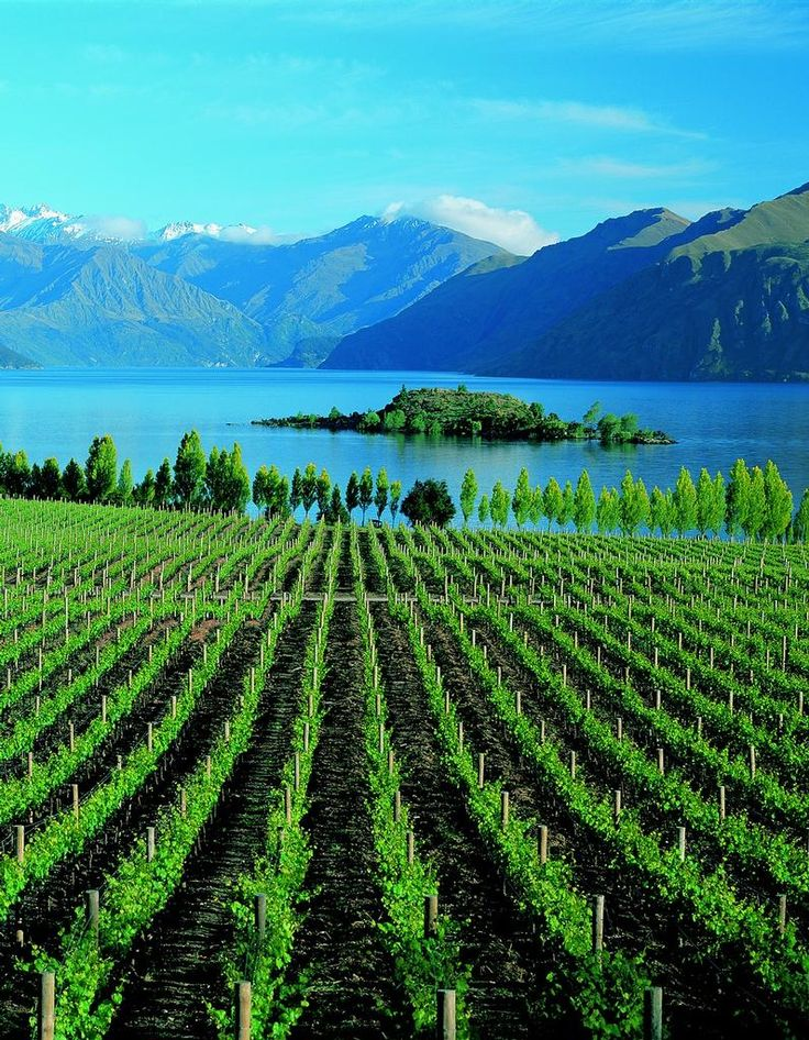 There is just something about lakes... Lake Wanaka, New Zealand