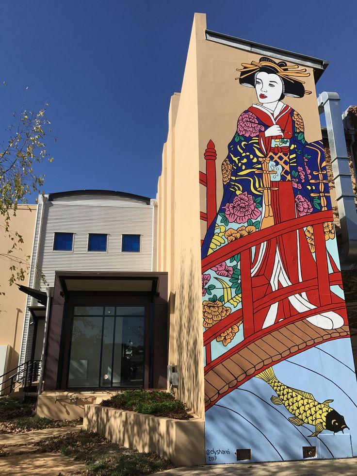 Another stunning piece of street art on the Toowoomba Regional Art Gallery building. #toowoombaregion #streetart #qldslargestoutdoorgallery