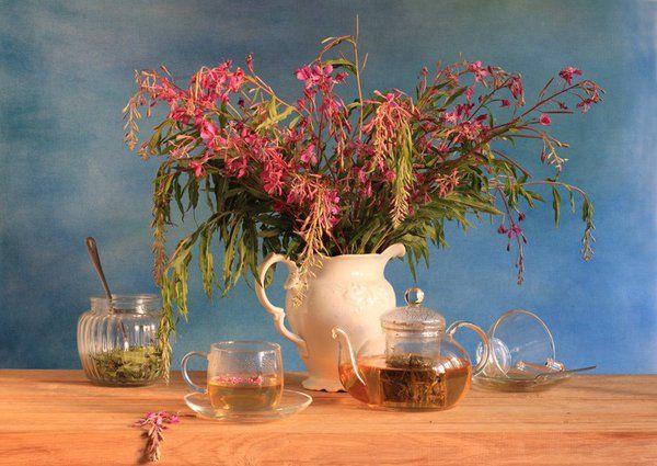 У нас интересный материал: «Копорский» чай — лечебный напиток домашнего приготовления» http://www.botanichka.ru/blog/2015/11/20/koporskiy-chay-lechebnyiy-napitok-domashnego-prigotovleniya/ …