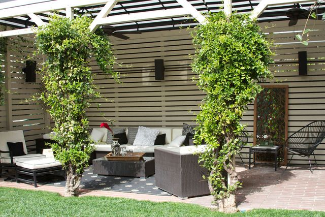 love the pergola and wooden privacy wall