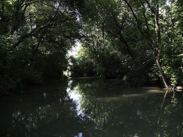 A different kind of tunnel - Tisza-tó