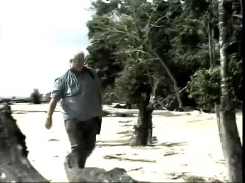 ▶ Aliens Killing Humans - Documentary HD - YouTube ... spirit orbs penetrating walls