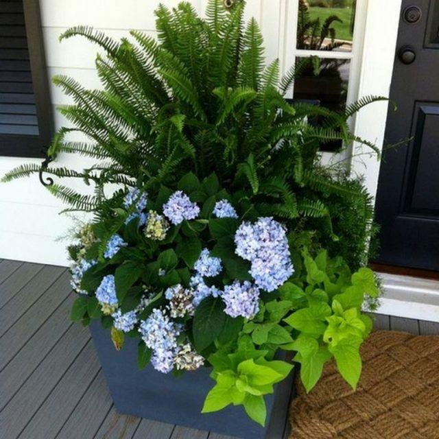 65 Attractive Front Door Flowers Pot Ideas Porch Plants Container Flowers Flower Pots