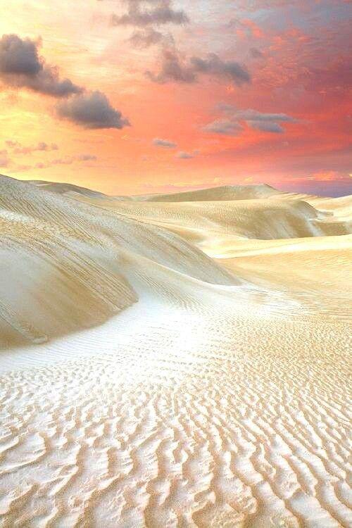 Sand Dunes, Cervantes  Western Australia