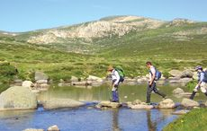Bushwalking & Hiking in the Snowy Mountains - Maps & Tours