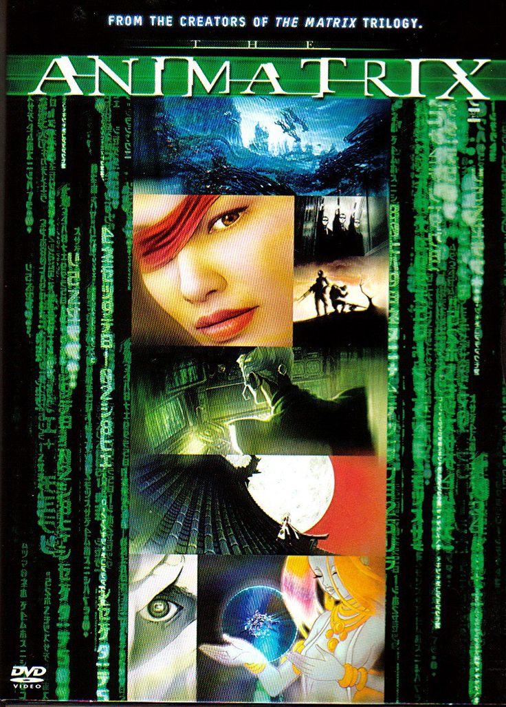"The Animatrix is a collection of several animated short films, detailing the backstory of the ""Matrix"" universe, and the original war between man and machines which led to the creation of the Matrix."